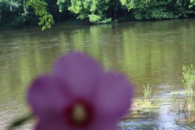 Dordogne camping la verte rive